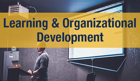 Learning and Organizational Development
