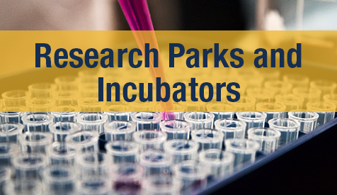 Research Parks and Incubators