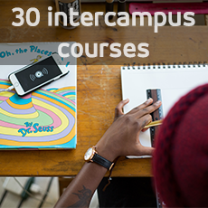 Student studying. 30 intercampus courses.