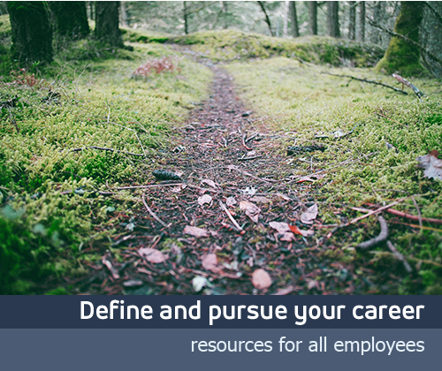 Define and pursue your career path