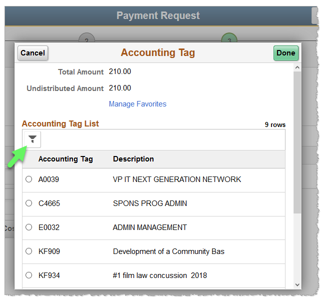 Screenshot: Accounting Tag window features a filter icon