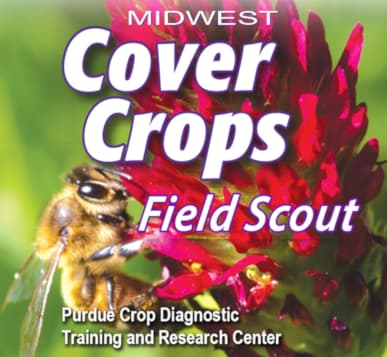 Cover crop field guide now available as mobile app