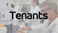 DR.about_.tenants_.jpg