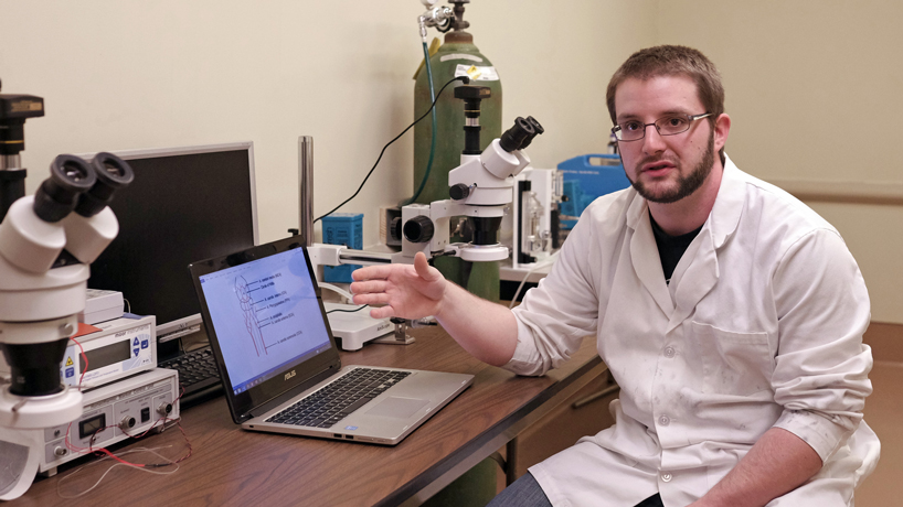 Undergraduate researcher focuses on plus, minus of nicotine in strokes
