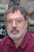 Andrew McClellan, Ph.D.