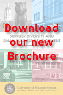 Click to download the SDSBD brochure