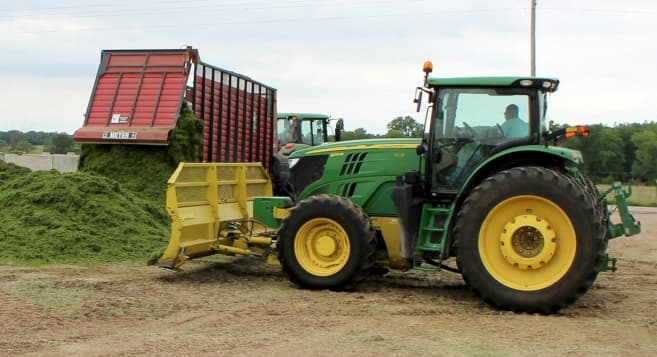 Chopped corn silage offers better control for beef producers